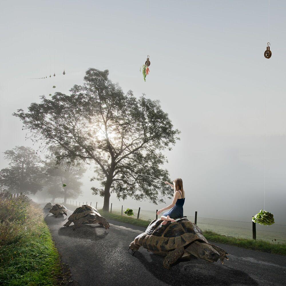 Fotografia On The Road Again - ALASTAIR MAGNALDO - Pittura di immagini