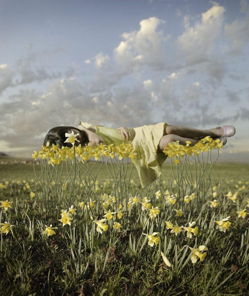 Photographie Yellowbud - ALASTAIR MAGNALDO - Tableau photo