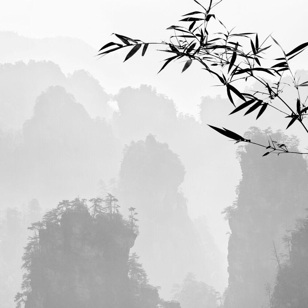 Photographie Amazing Zhangjiajie #2 - ALMA  - Tableau photo