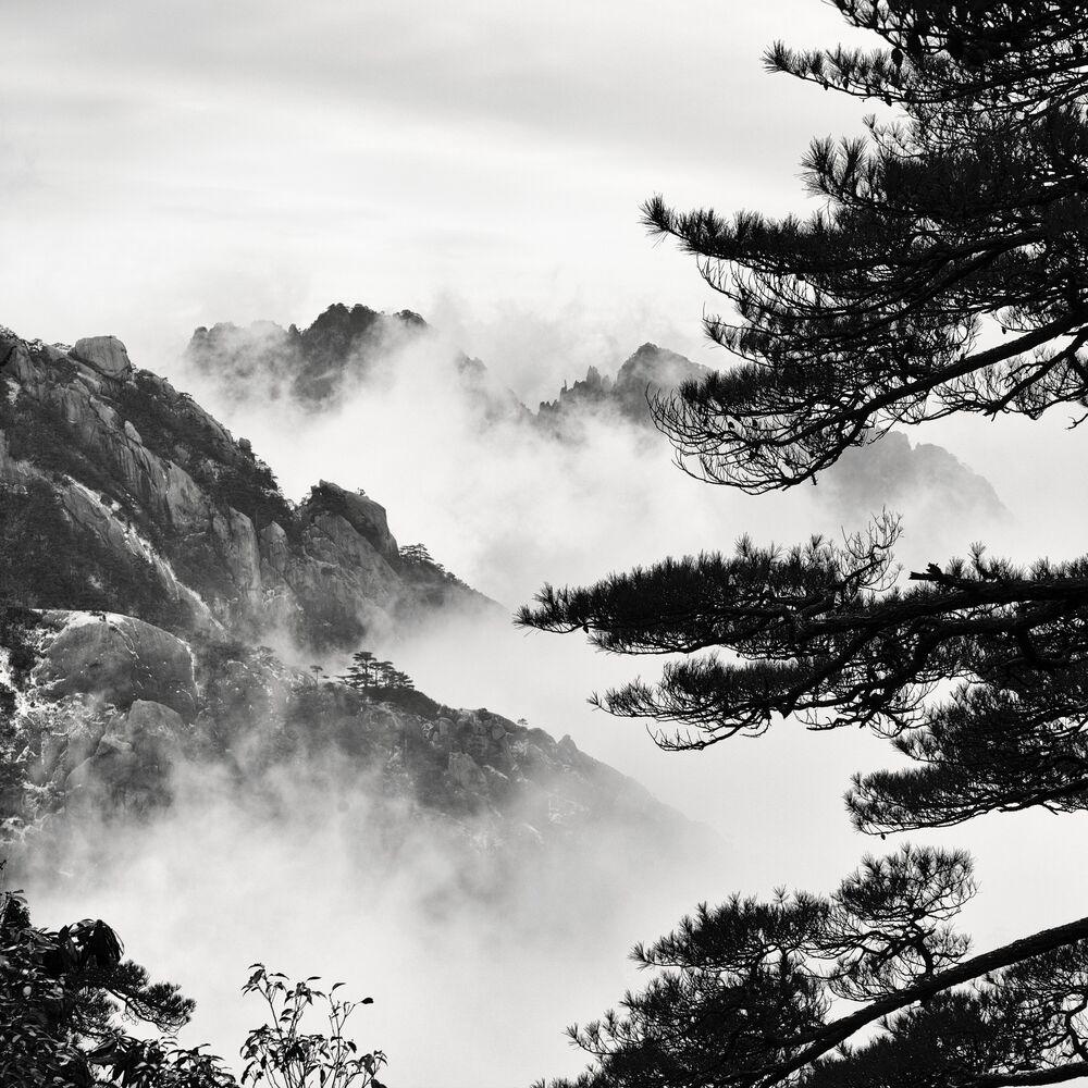 Photographie Yellow Mountain #2 - ALMA  - Tableau photo