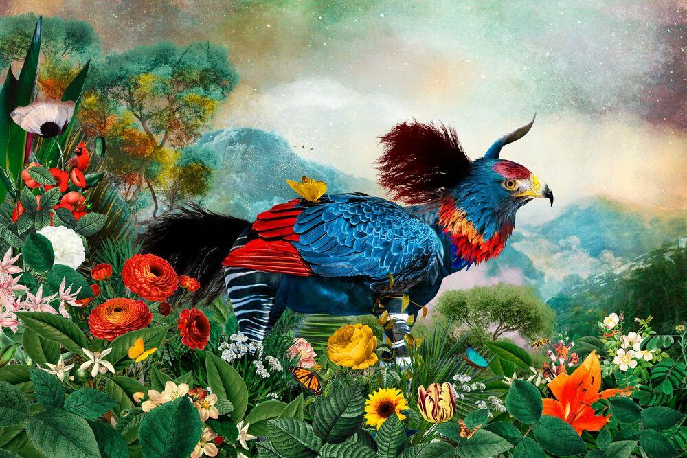 Fotografie AQUIAPIATOS - ANDRE SANCHEZ - Bildermalerei