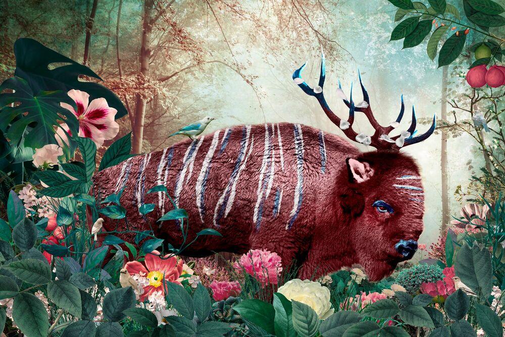 Fotografia BONARISUS - ANDRE SANCHEZ - Pittura di immagini