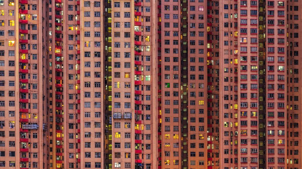 Photograph THE BEEHIVE 01 - ANDY YEUNG - Picture painting