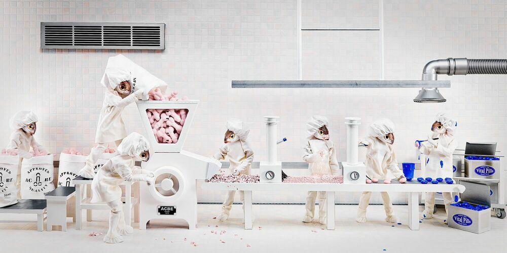 Fotografie Penis Crusher - ANNE-CATHERINE BECKER-ECHIVARD - Bildermalerei