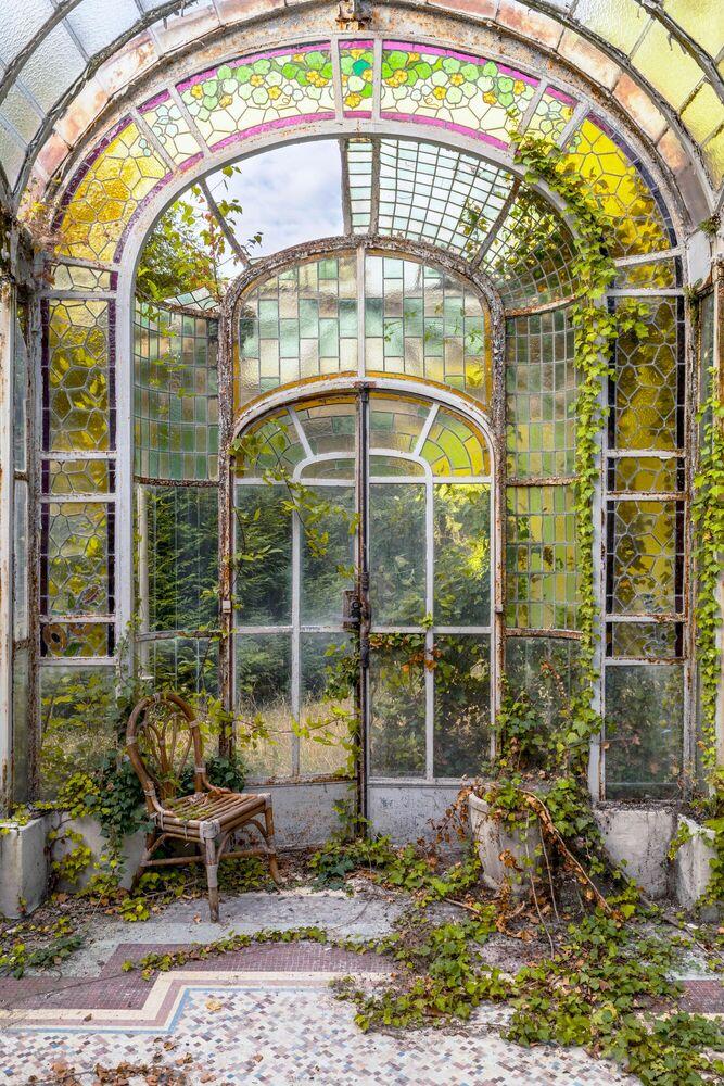 Photographie Arche végétale II France - AURELIEN VILLETTE - Tableau photo