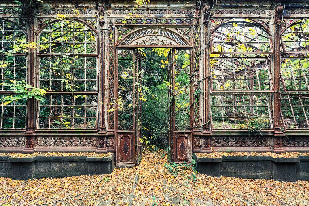 Photographie L'arche végétale - AURELIEN VILLETTE - Tableau photo