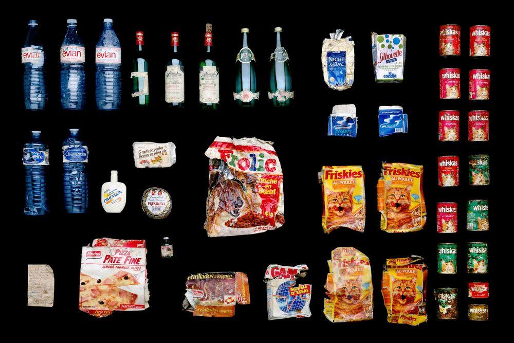 Photographie BRIGITTE BARDOT PARIS 1989 - AUTOPSIE  - Tableau photo