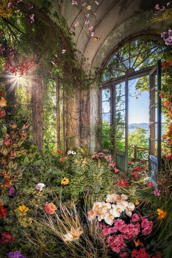 Fotografia LA ROMANCE DES FLEURS II - BERNHARD HARTMANN - Pittura di immagini