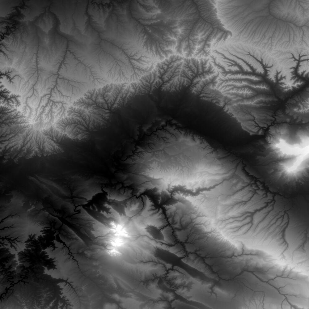 Fotografia TANTIBUS -  CHASSEURS DE NUITS - Pittura di immagini