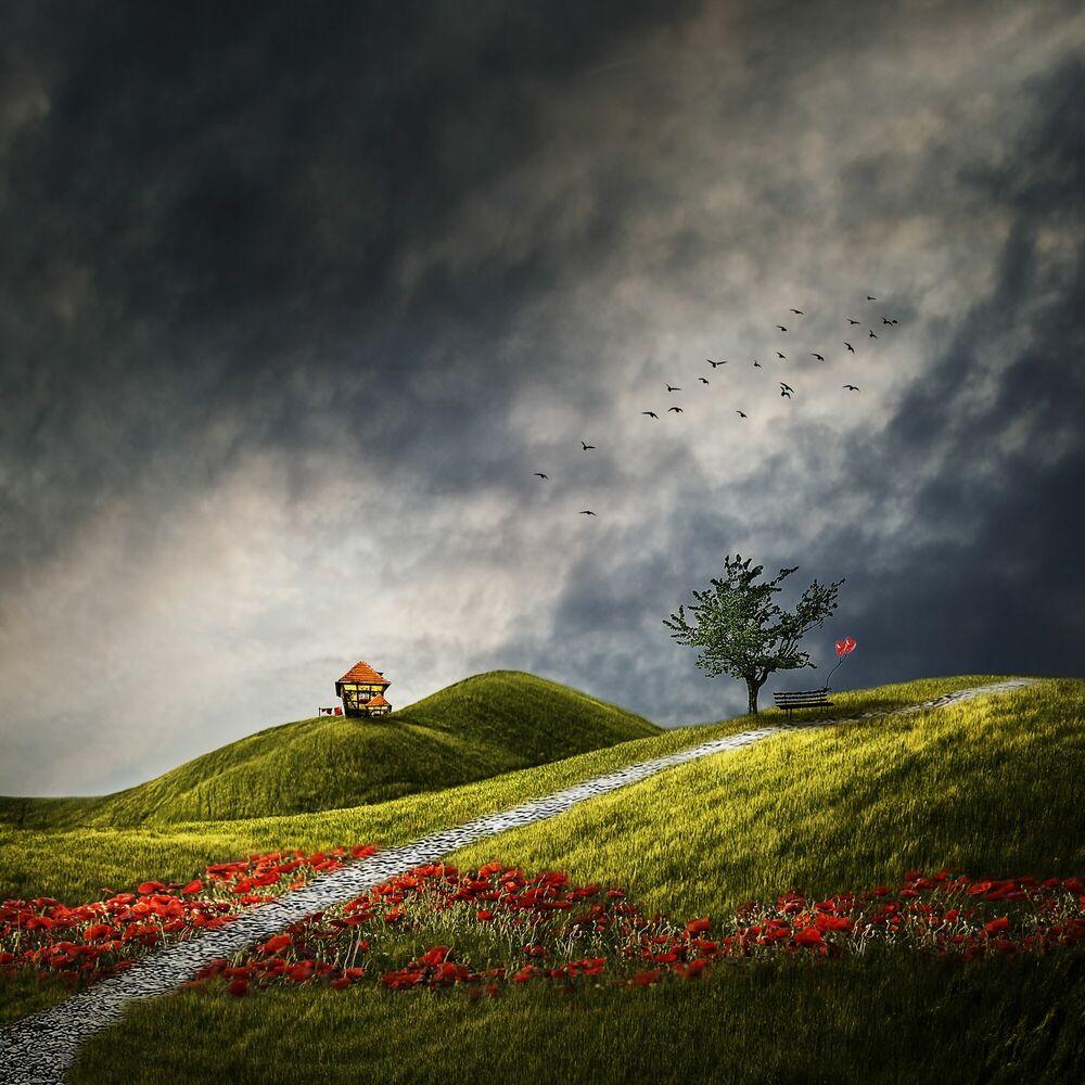 Fotografie Traumwelt - CHRISTINE ELLGER - Bildermalerei