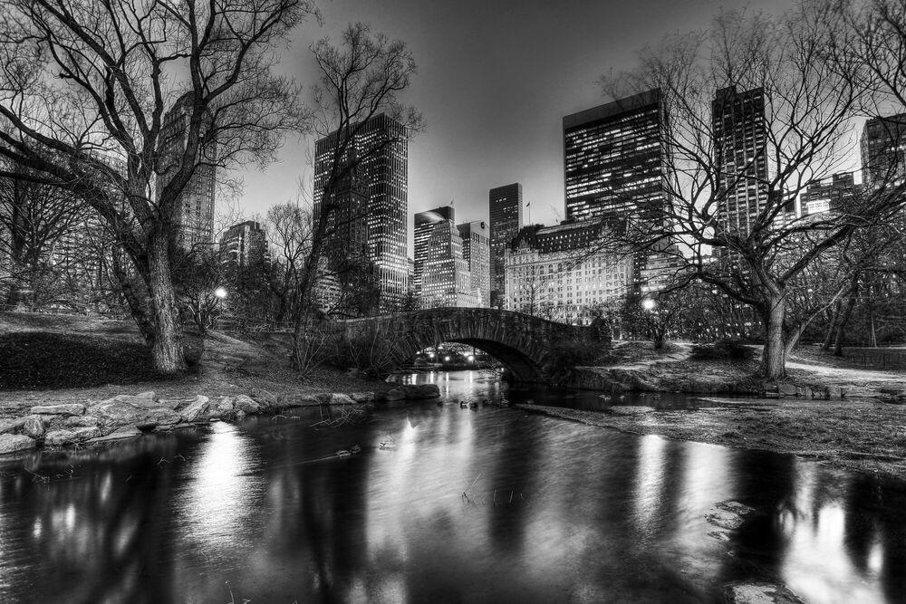 Photographie Central Park Evening - CHRISTOPHER BLISS - Tableau photo