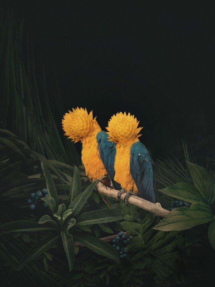 Fotografia FRIENDSHIP - DAWID PLANETA - Pittura di immagini