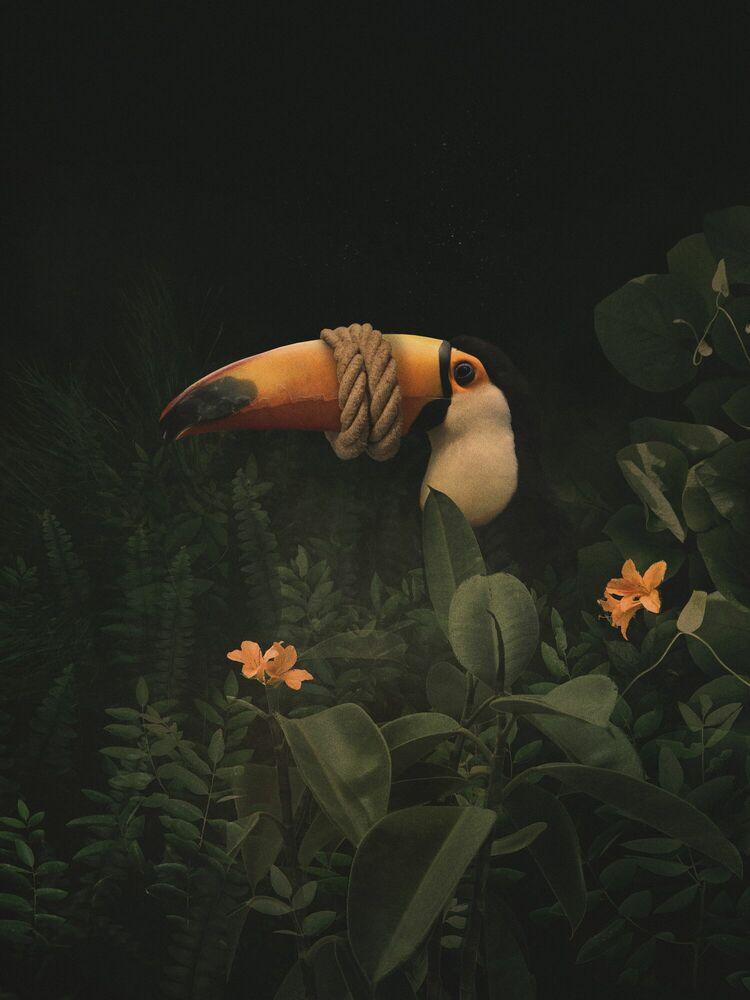 Photographie SILENCE - DAWID PLANETA - Tableau photo