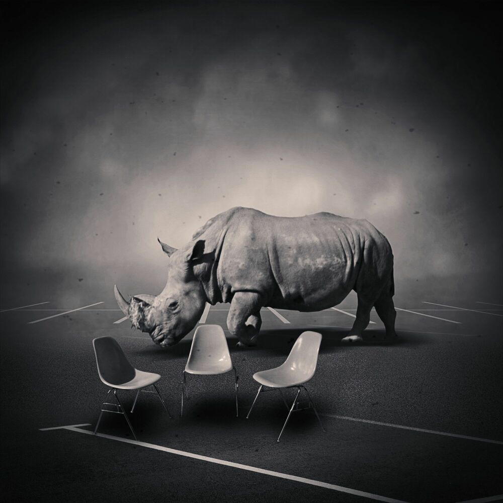 Photograph DREAMSPACE RELOADED 49 - RHINOCEROS - DENIS OLIVIER - Picture painting