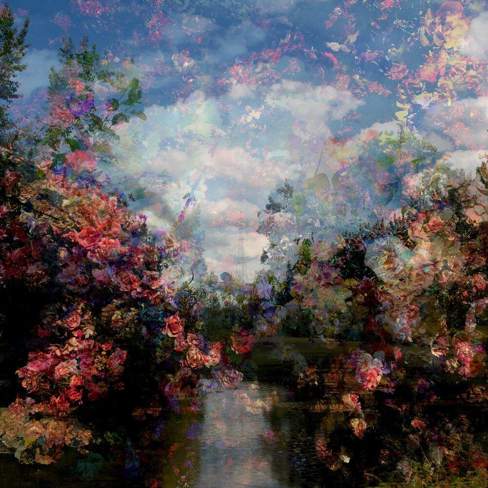 Photographie Fragment de paysage 5882 - Didier Claes - Tableau photo