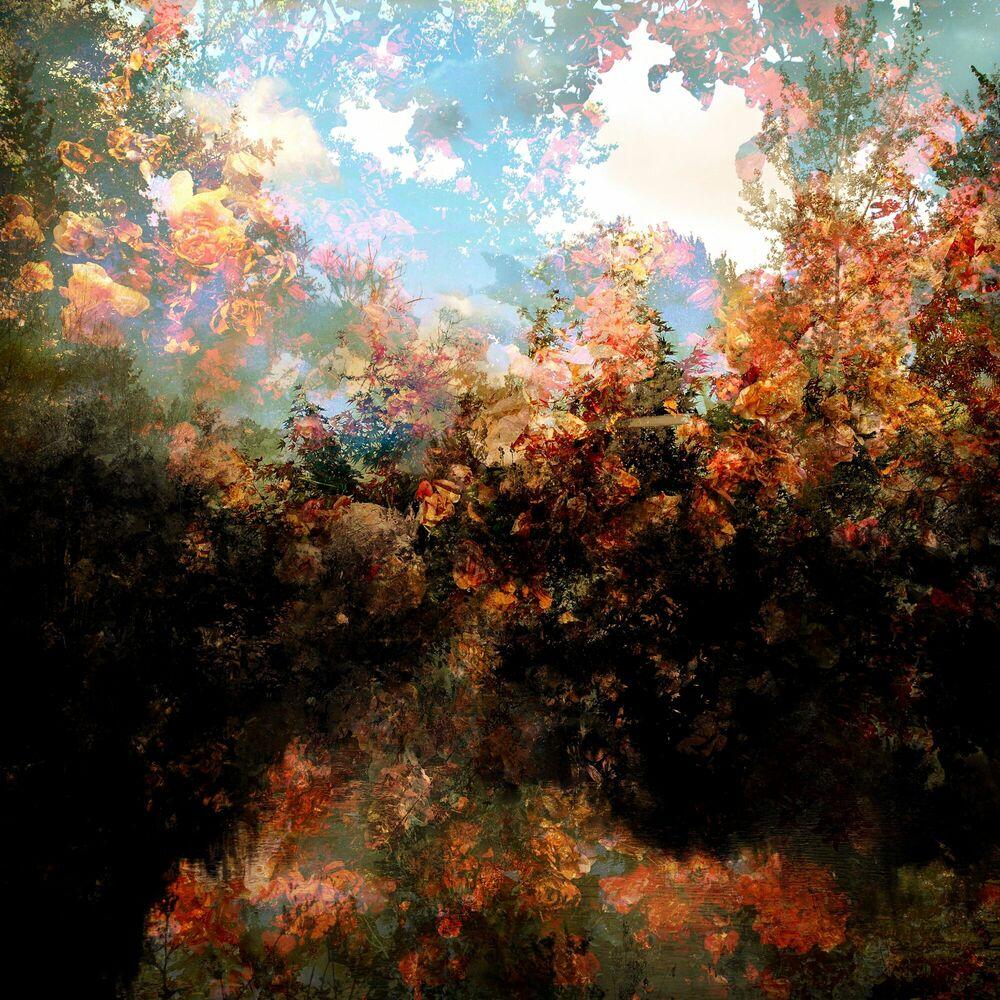 Photograph Fragment de paysage 5921 - Didier Claes - Picture painting