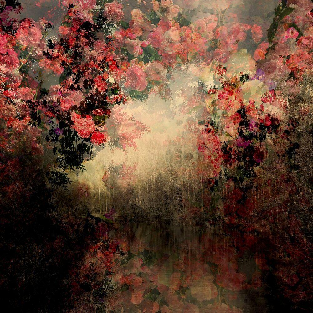 Fotografie Fragment de paysage 6555 - Didier Claes - Bildermalerei