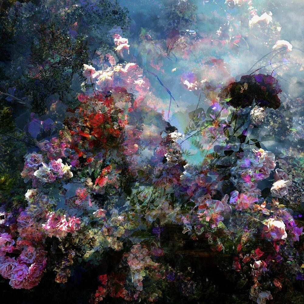 Fotografie Fragment de paysage 9948 - Didier Claes - Bildermalerei