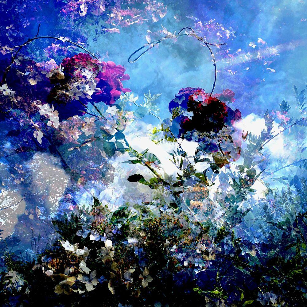 Fotografia Fragment de paysage 9953 - Didier Claes - Pittura di immagini