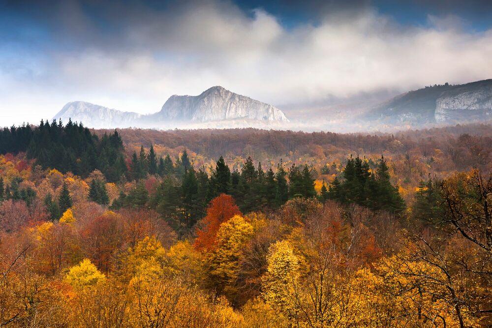 Fotografia Land of Illusion - EVGENI DINEV - Pittura di immagini