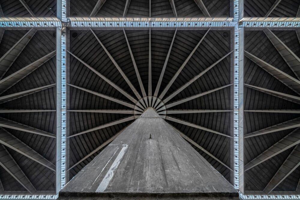 Fotografia CONCRETE FLOWER - FRANCIS  MESLET - Pittura di immagini