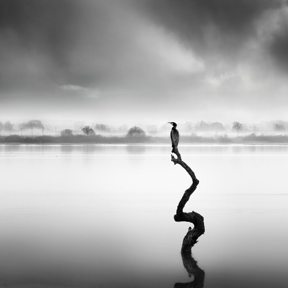 Photographie WHISPERS OF SILENCE - GEORGE DIGALAKIS - Tableau photo