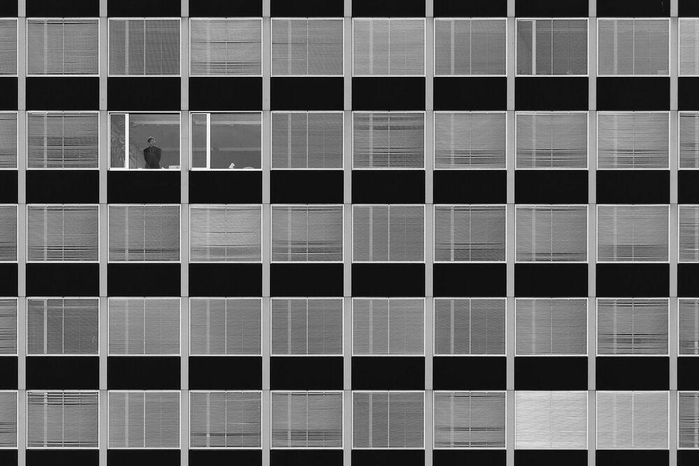 Fotografia BUSY BOSS - HARRY LIEBER - Pittura di immagini