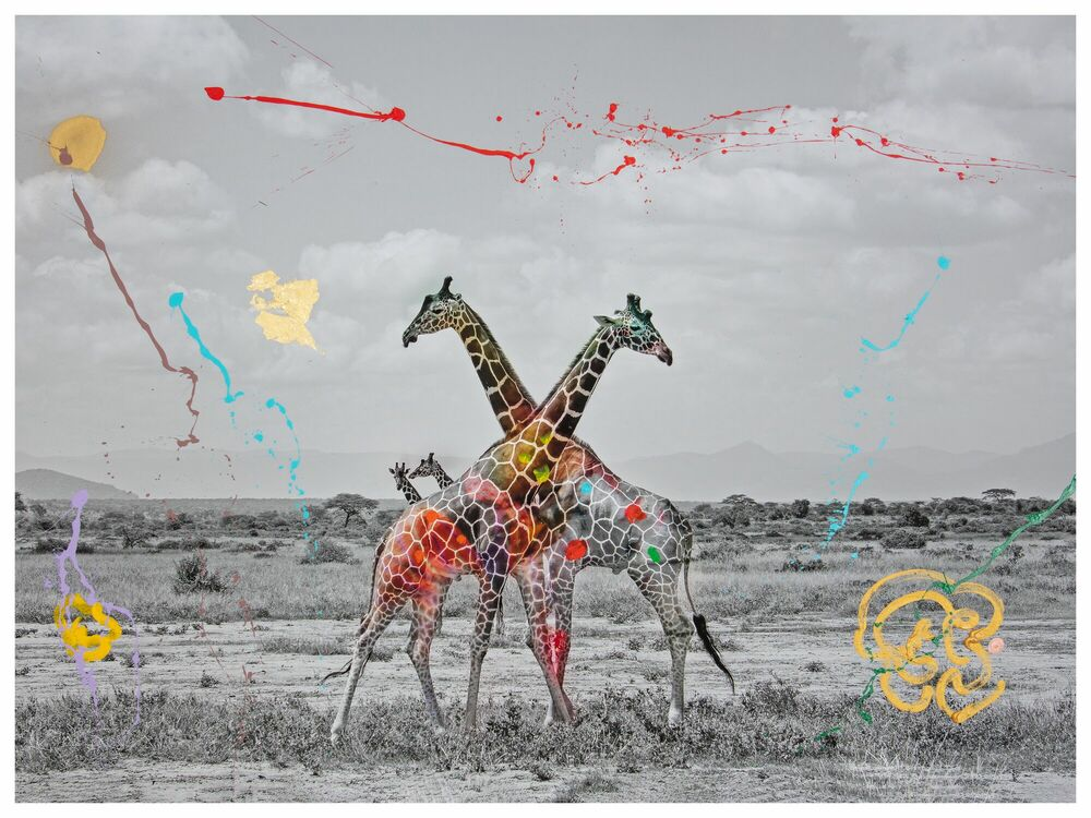 Photograph GIRAFFE DUET -  I'M NOT A TROPHY - Picture painting