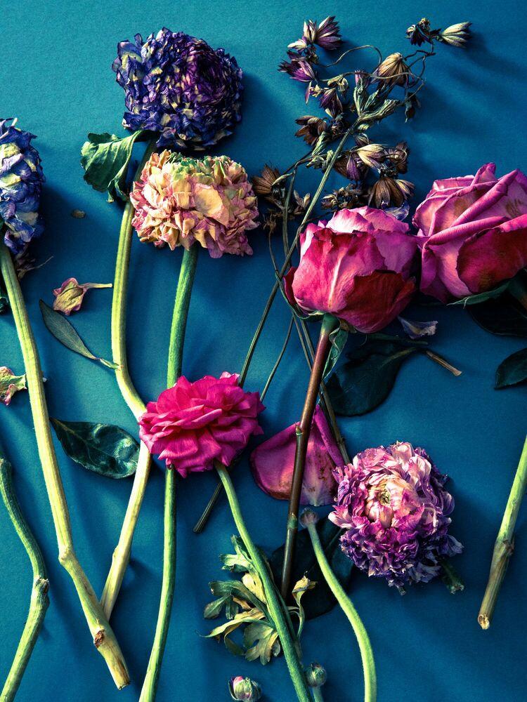 Photographie FLOWER STUDY 2 - INGRID RASMUSSEN - Tableau photo