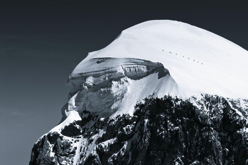 Photographie Eagle Head - JAKUB POLOMSKI - Tableau photo
