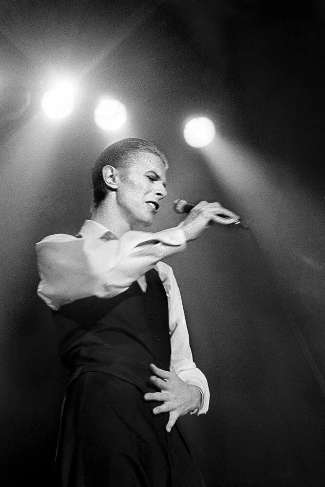 Photographie Bowie - JAN WERNER - Tableau photo
