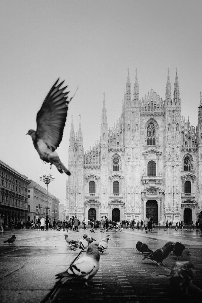 Photograph Duomo di Milano II - Jörg DICKMANN - Picture painting
