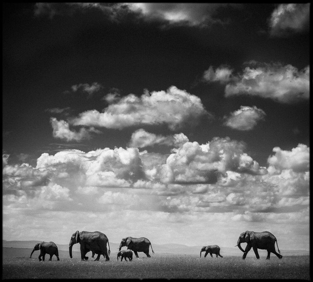 Photographie Under the Clouds I - LAURENT BAHEUX - Tableau photo