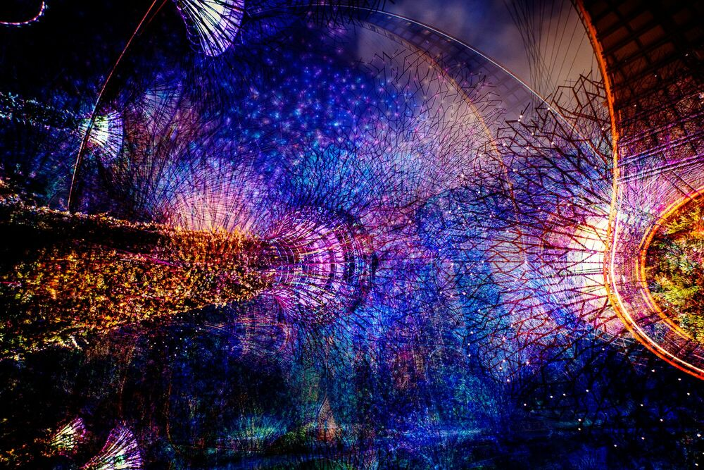 Photographie Supertree on Fire - LAURENT DEQUICK - Tableau photo