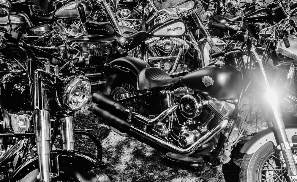 Photograph HARLEY DAVIDSON - LAURENT NIVALLE - Picture painting