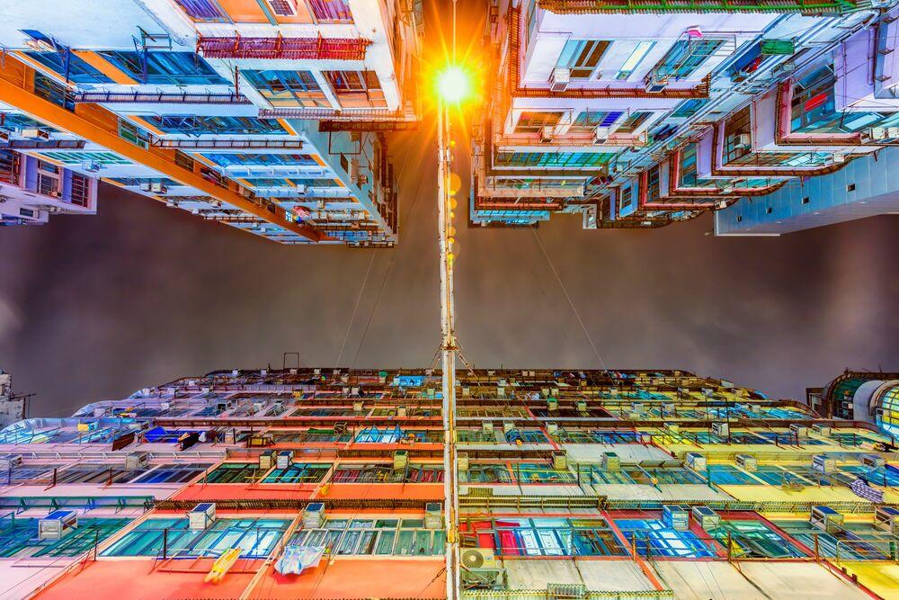 Fotografia LOOKING UP II -  LDKPHOTO - Pittura di immagini