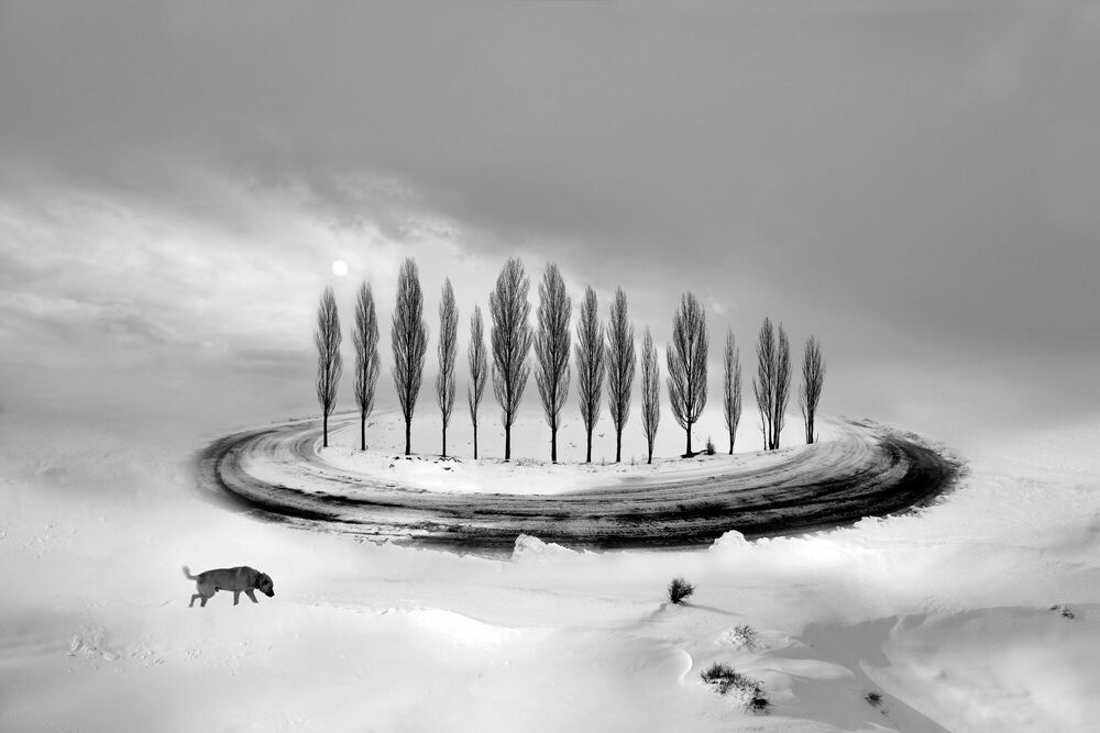 Photograph White Infinity Loneliness - Leyla Emektar - Picture painting