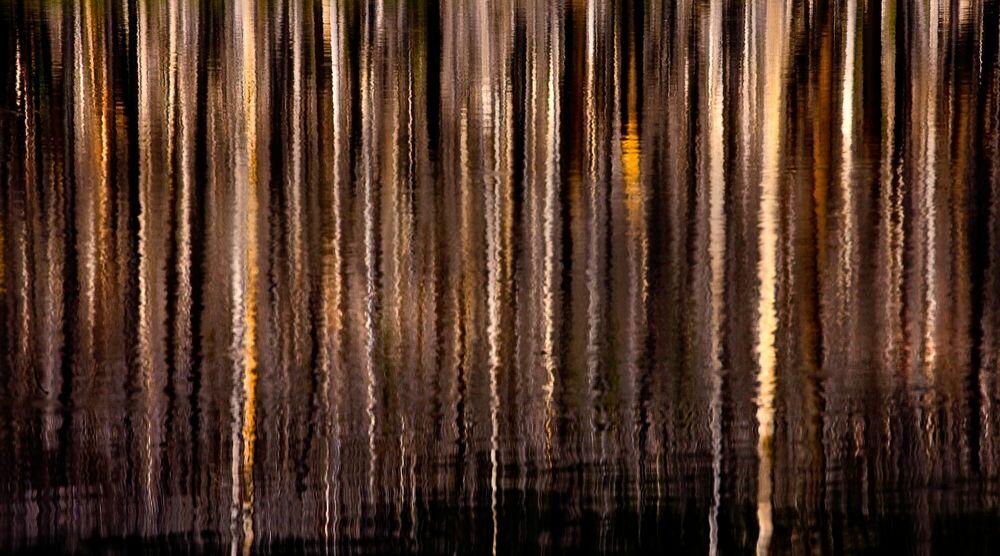 Photograph Distortion Jefferson Wilderness Oregon - MARC ADAMUS - Picture painting