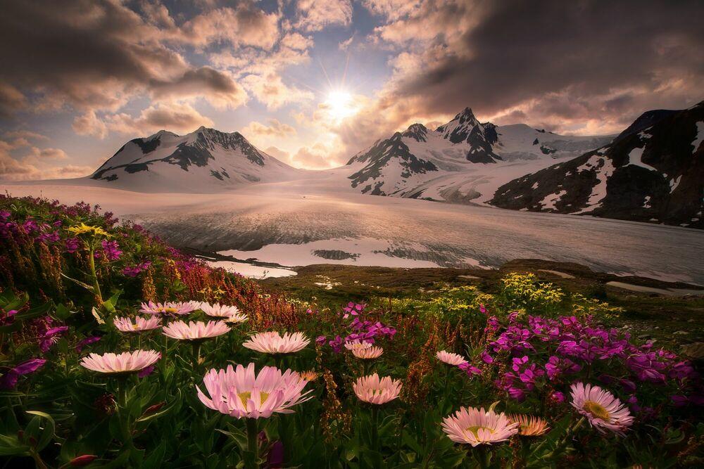 Kunstfoto So Long for this Moment Boundary Range Alaska - MARC ADAMUS - Foto schilderij