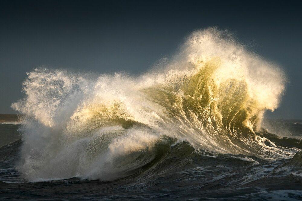 Photographie LES GRIFFES DOREES DE L OCEAN - MATHIEU RIVRIN - Tableau photo