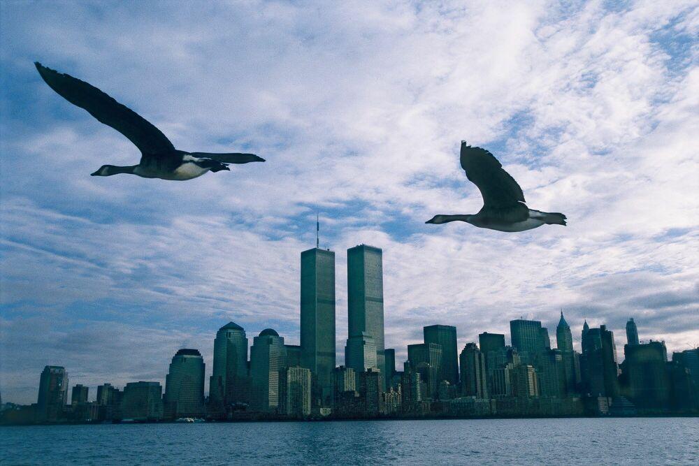 Fotografia Twin Towers - Le peuple migrateur - MATHIEU SIMONET - Pittura di immagini