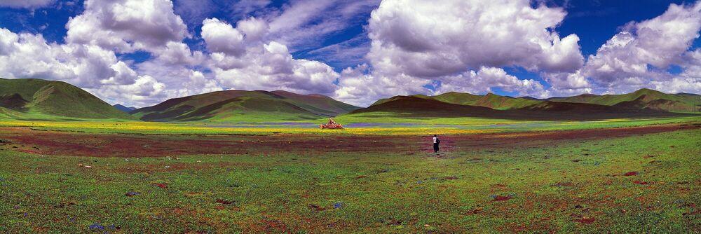 Photographie LA RÉGION DE DZACHOUKA - MATTHIEU RICARD - Tableau photo
