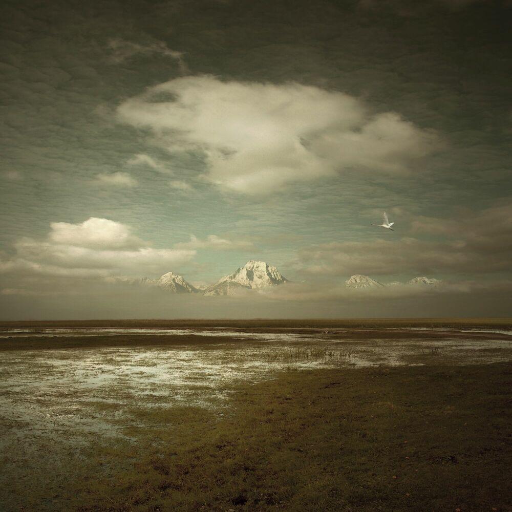 Photographie Movement of Grace - MICHAL KARCZ - Tableau photo