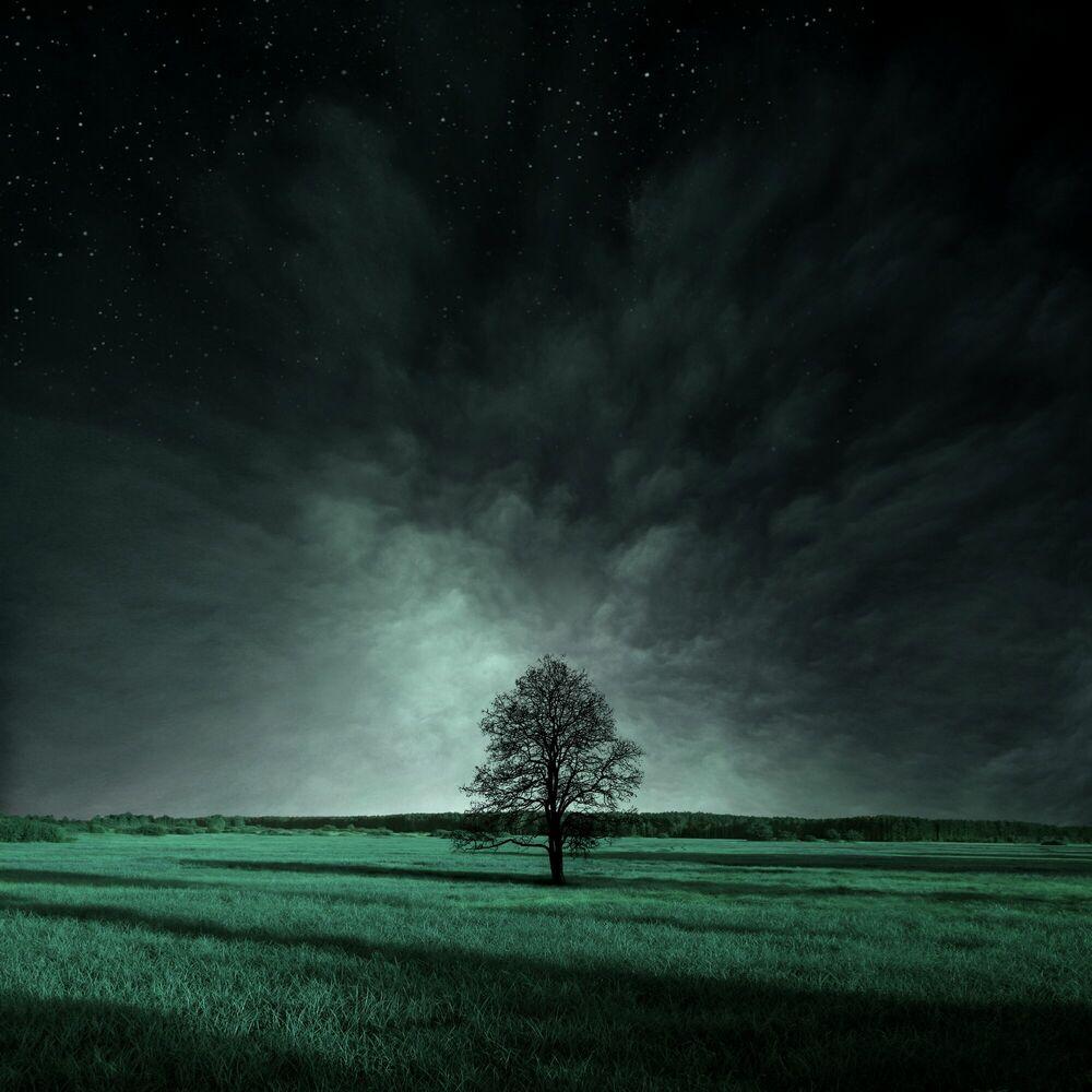 Fotografia Selene - MICHAL KARCZ - Pittura di immagini