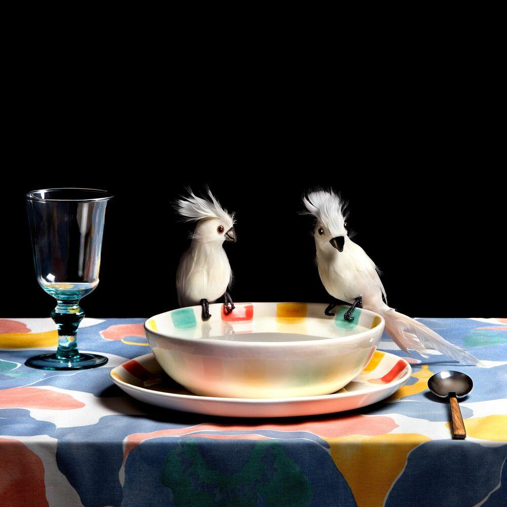 Fotografia COCKATOO SOUP - MIGUEL VALLINAS - Pittura di immagini