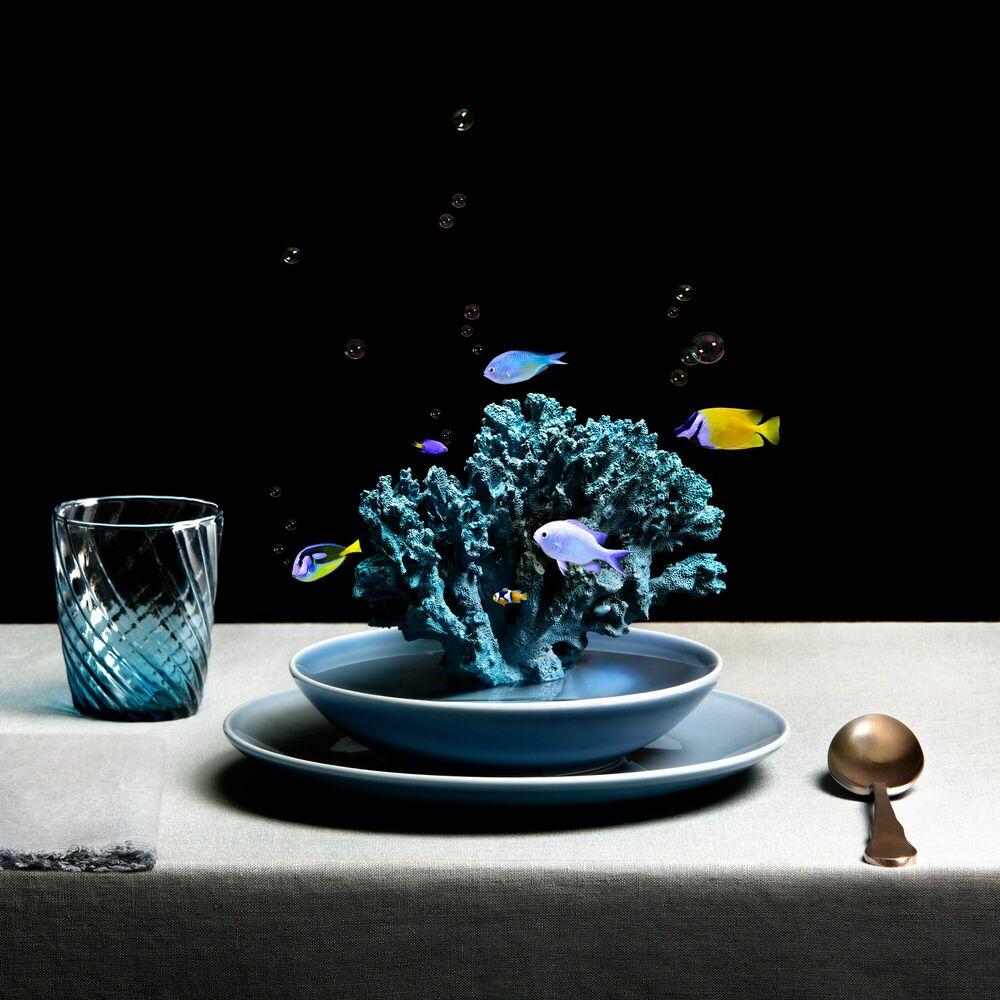 Fotografia TROPICAL CORAL SOUP - MIGUEL VALLINAS - Pittura di immagini