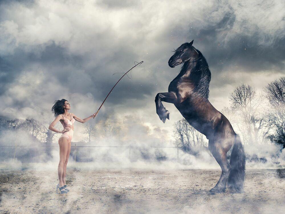 Fotografie Sexy Horse - NICOLAS BETS - Bildermalerei