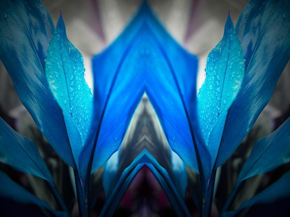 Fotografia Blue Arch - NICOLAS JARDRY - Pittura di immagini