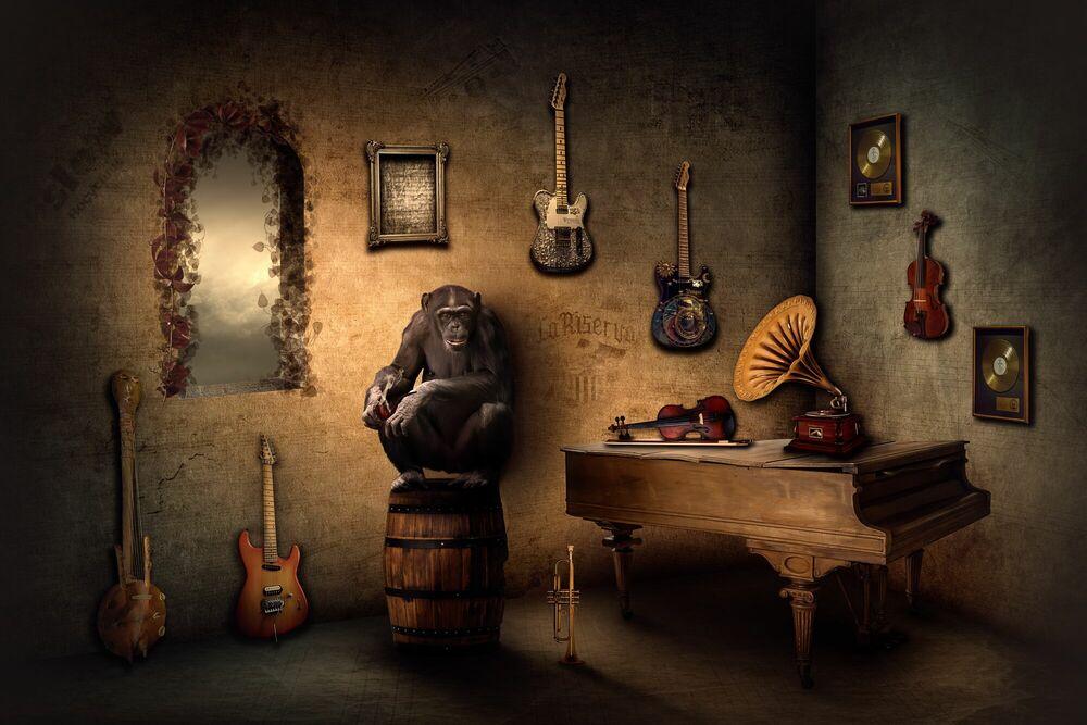 Photographie THE MUSIC DEALER - NICOLE HOLZ - Tableau photo