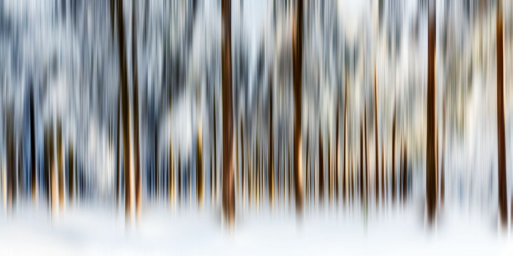 Photograph VERTICALE IV - NICOLE HOLZ - Picture painting